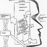 Um modelo de comunicação em PNL